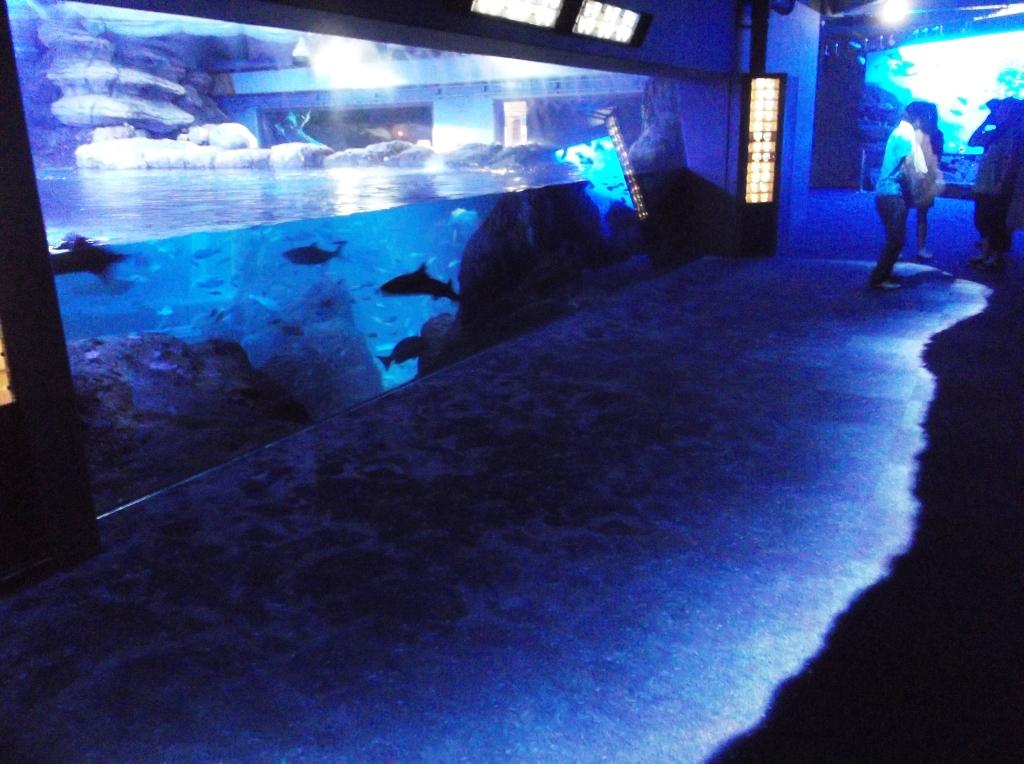 Enoshima13