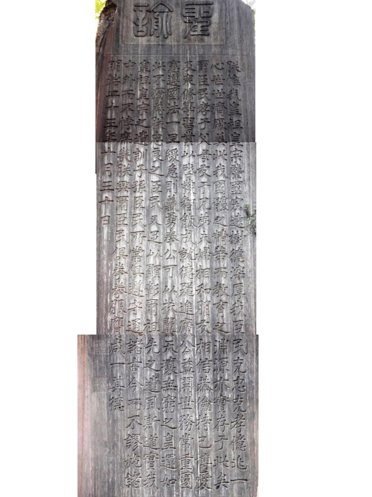 14101625